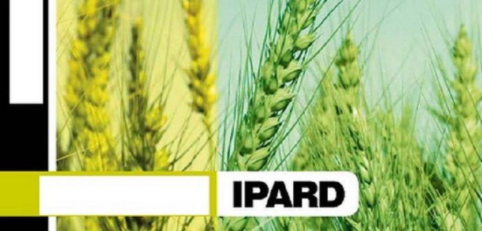 Формирање ЛАГ-а и израда Стратегије руралног развоја