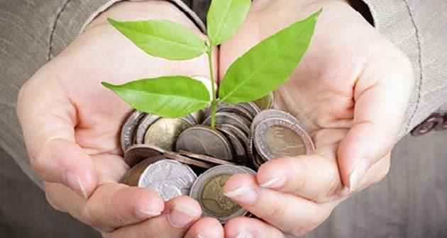 Инвеститори запошљавају 500 нових радника у Кули – Еуроин шири производњу, ничу и фабрике Севепланта и Calzedonie