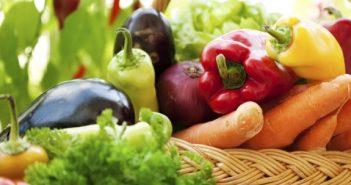 organska-hrana-proizvodnja-735x303