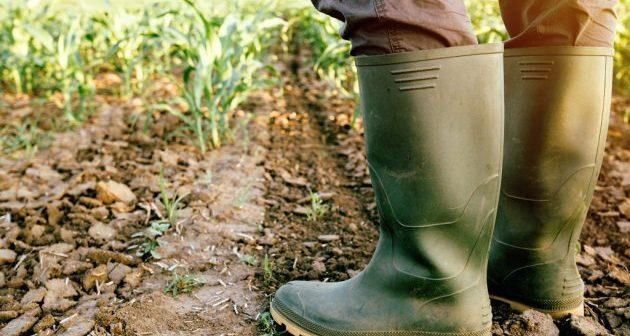 poljoprivrednik_051017_tw630