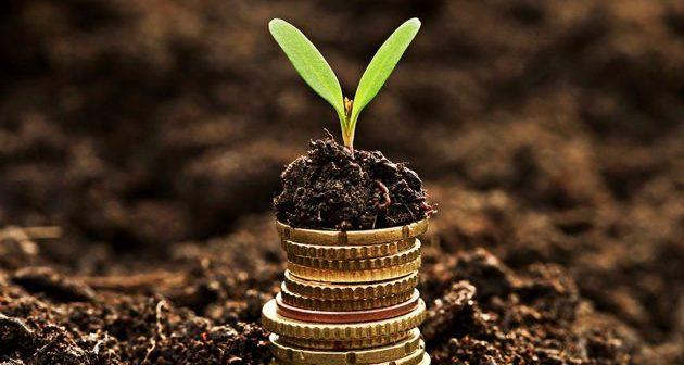 investicije_1_200815_tw630