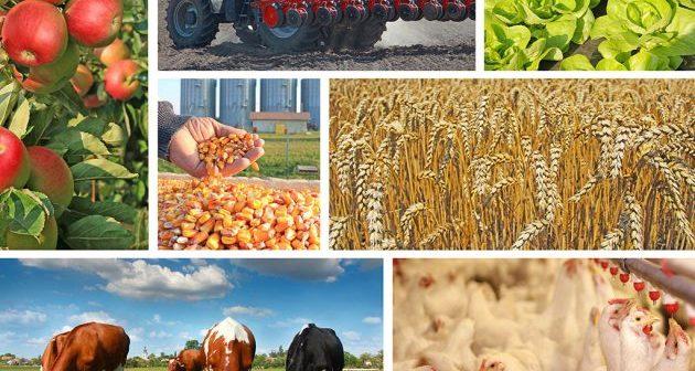 poljoprivreda_011215_tw630