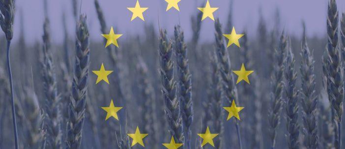 eu_agriculture_165692309_1200px-735x303